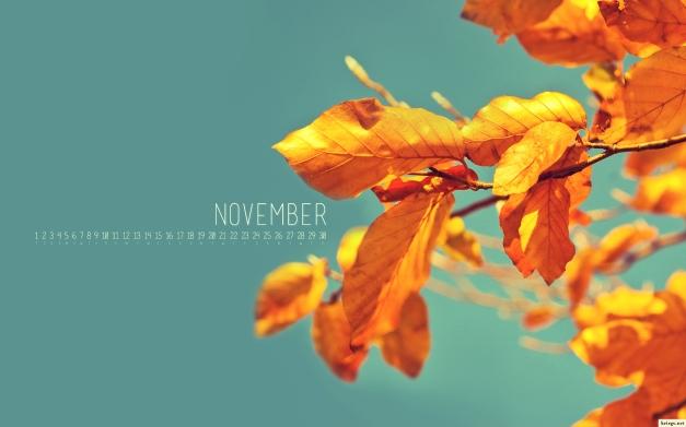 2012_november_1920ws_calendar